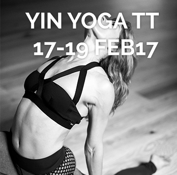 Yin Yoga Teacher Training February 17-19 2017